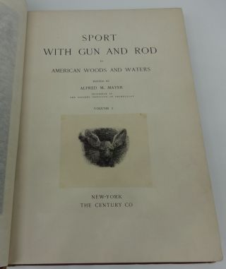 SPORT WITH GUN AND ROD